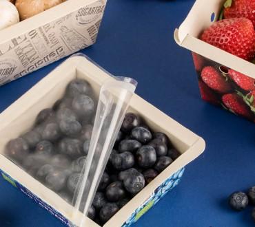 paperwise-eco-friendly-moisture-resistant-paper-board-topseal-bio-fruit-vegetable-packaging