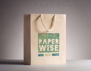 PaperWise eco friendly paper bag disposable sustainable packaging