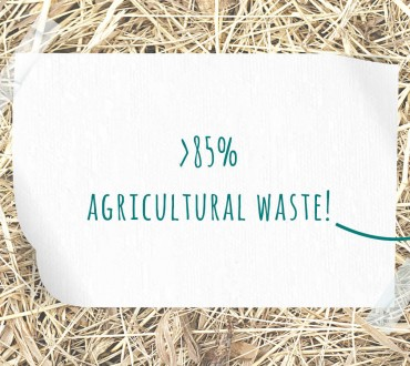 Paperwise renewable recourses paper board white agricultural waste