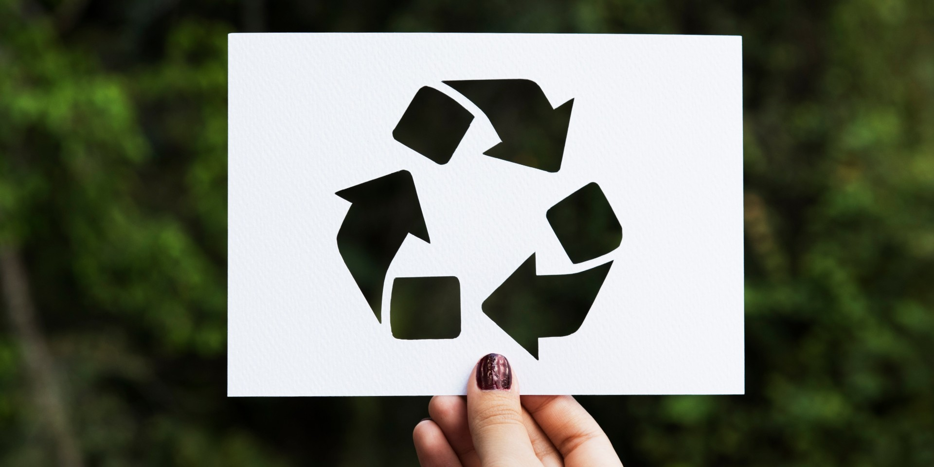 PaperWise eco friendly socially responsible paper board circular economy renewable recources
