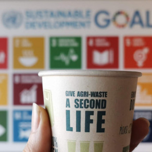 How can I become more sustainable? Paperwise chooses the SDGS as a guiding principle