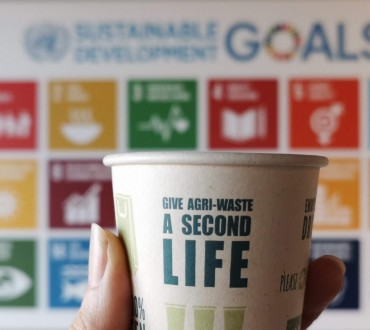PaperWise eco friendly socially responsible paper board SDGs sustainable development goals