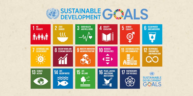 PaperWise socialementresponsables eco e?coresponsable papier carton durable SDGs sustainable development goals