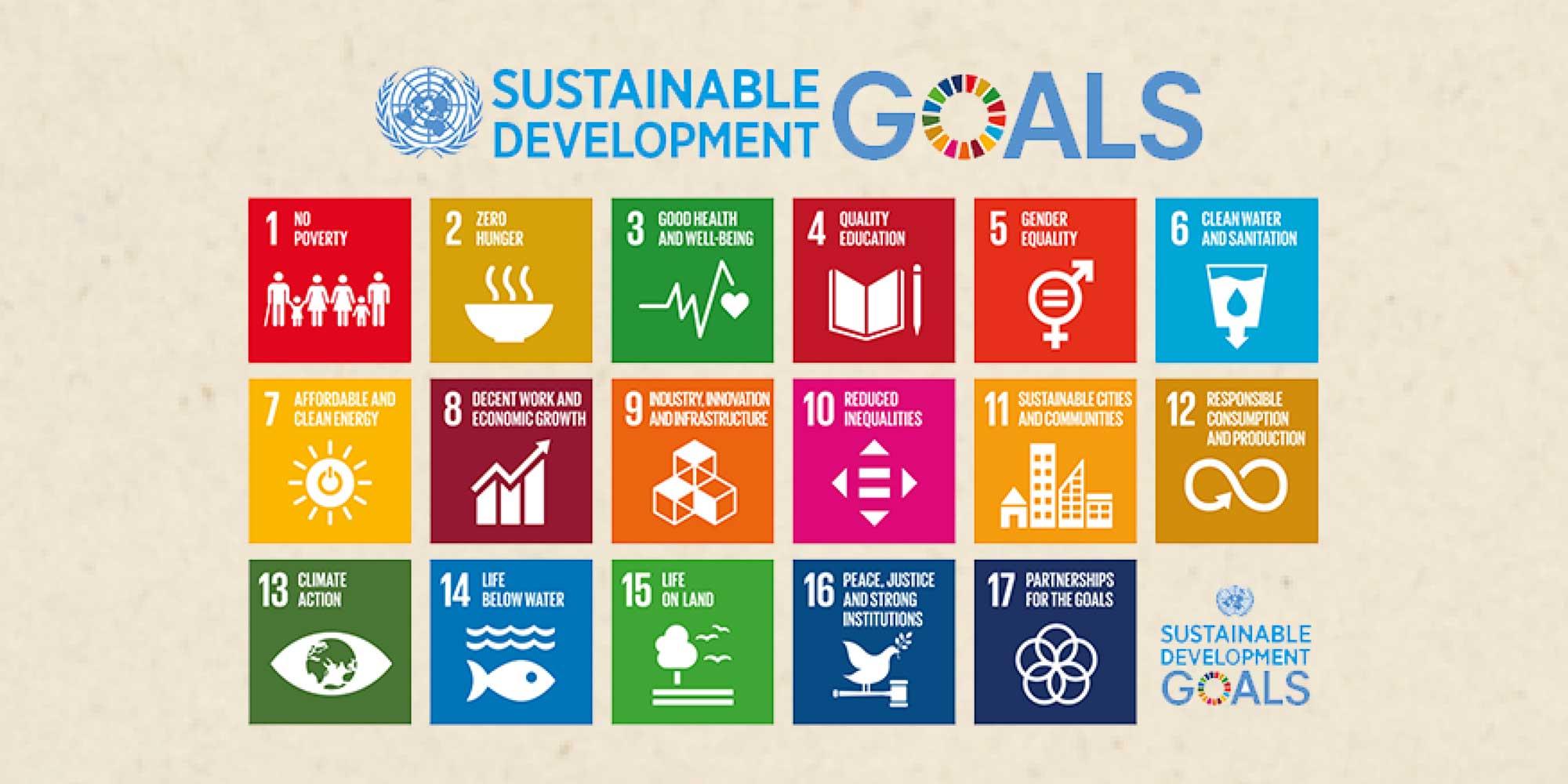 PaperWise sozial verantwortlich umweltfreundlich papier karton SDGs sustainable development goals
