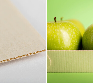 paperwise-eco-friendly-paper-board-agri-waste-blog-top-images4